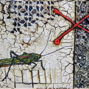 Series Objects, Tür, 70x70 a2
