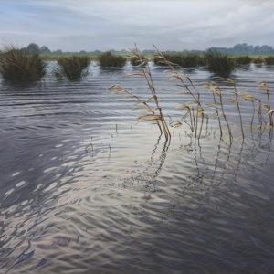 überschwemmung 2010